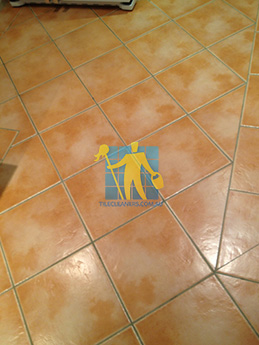 Floor Tiles Cleaning | Perth Tile Solutions