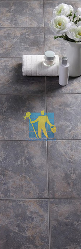 Ceramic Tiles Cleaning | Perth Tile Solutions